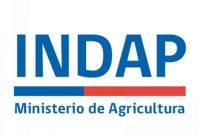 ministerio de agricultura indap